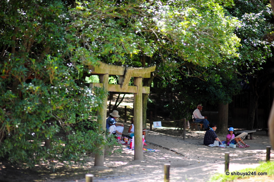 A small Shrine in the park