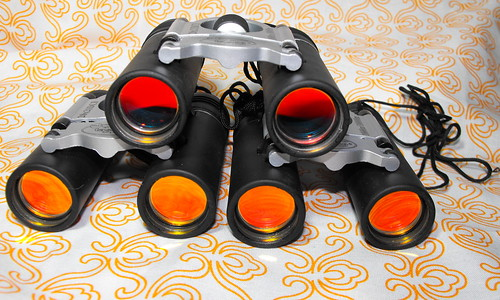 Ebay binoculars for the kids