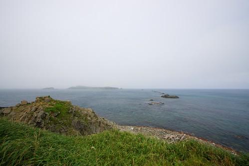 スコトン岬からトド島を望む