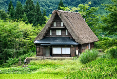Ainokuro (rasenkantenstein) Tags: world old house mountain man mountains green heritage field japan forest rice live traditional lifestyle unesco tradition ricefield prefecture gifu worldheritage gokayama gassho shirokawago ainokurao