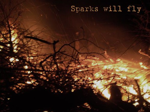 The Hunger Games Fire Photo Sparks