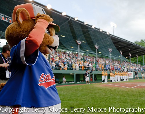 LLWS Day 4 photos-14