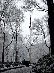 Central Park Nevado (Agnaldo Pereira Miguel) Tags: centralpark manhattan eua nuevayork