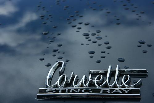 Corvette Stingray Logo. 1965 Chevrolet Corvette Stingray trunk logo wet. 8/22/10.