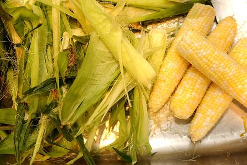 cob hanna honey pot husk corn