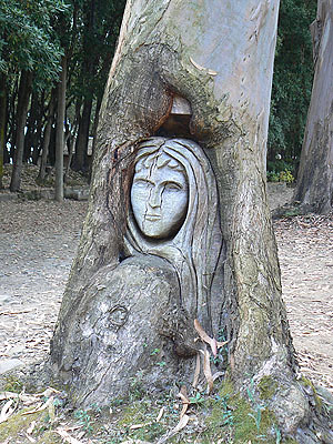 arbre sculpté.jpg