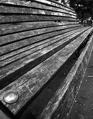Bench life (louisec.photographer) Tags: park bench scotland louise paisley corcoran