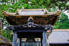 _DSC3938 (Abiola_Lapite) Tags: japan nikon worldheritagesite  nikko nikkor toshogu   d300 rinnoji tok