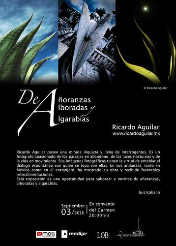 www.ricardoaguilar.mx