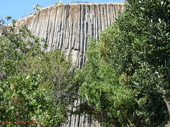 Basalti colonnari (3-12 milioni di anni fa) (RoLiXiA) Tags: sardegna sardinia sardaigne cerdea miocene colatalavica guspini basalticolonnari mediocampidano panasonicdmcfz28 monumentonaturalistico