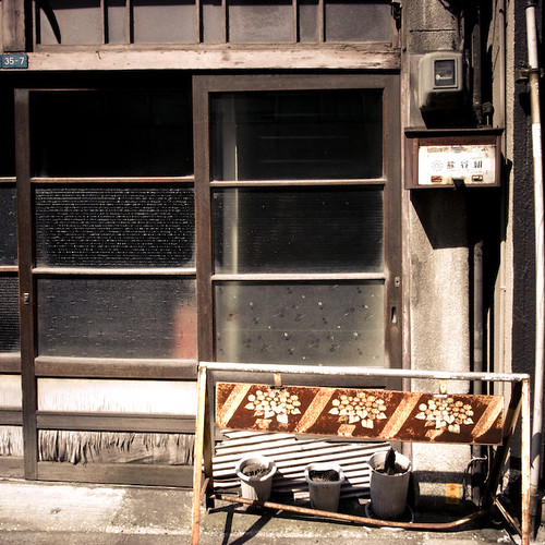 Rusted Flower Shoji