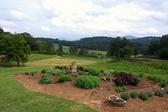 LoganBerry Heritage Farm, White County, Georgia (UGArdener) Tags: georgia august farms whitecounty sustainableagriculture organicfram loganberryheritagefarm