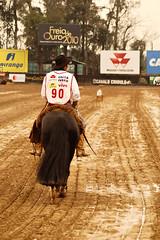Freio de Ouro 2010 (Ivan Bustam@nte) Tags: brazil horse rio brasil d50 criollo caballo cheval nikon do brasilien 70300mm cavalo pferd sul brsil paard gaucho gacho expointer esteio crioulo gauchismo equestre bresilien abccc granmde