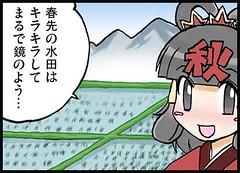 100830(1) - 《NHK 電視台 – 氣象預報》線上四格漫畫「春ちゃんの気象豆知識」第35回、夏稻連載中!