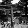(mathias shoots analogue) Tags: 120 6x6 japan analog 15 150 analogue nikko nophotoshop rodinal kiev88 ilfordfp4 homedevelopment volna2880