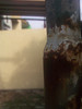korosif (motozine snapshot!) Tags: flowers zoom motorola makro rumput manggo karatan zn5 kayujati bungairis rumputgajah photohpiris kayulapuk besimotorolamotozinemotozn5makromodeflowersfruitwatermelonmanggocapturelandscape