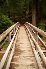 Wooden Foot Bridge (p medved) Tags: puente ponte most pont brug brcke