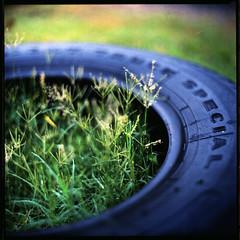 (19/77) Tags: slr 120 film mediumformat malaysia 1977 negativescan tyre kiev88 autaut canoscan8800f arsat80mmf28 myasin