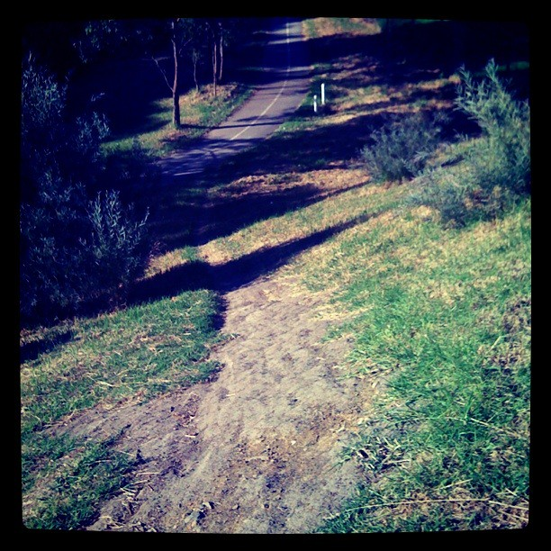 Scoot down to the shared trail for a little bit ...