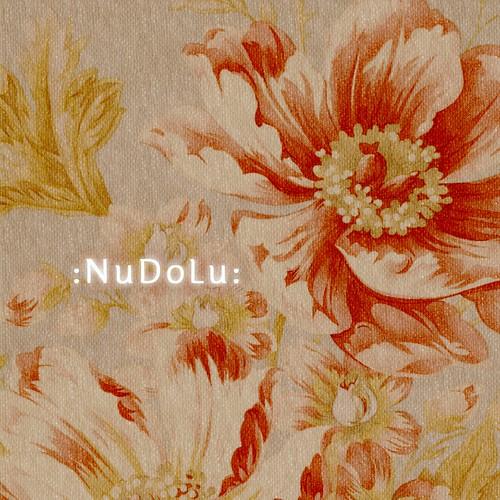 NuDoLu new logo 2011