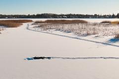 crawl_1 (Micael Carlsson) Tags: winter snow vinter nikon sweden karlstad sverige mm nikkor snö värmland 1685 varmland d300s