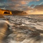 San Gregorio's Golden Shores #2 - San Gregorio State Beach, California