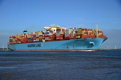 Maersk Edinburgh DST_1219 (larry_antwerp) Tags: maerskedinburgh maersk container rilland netherlands nederland zeeland schip ship vessel 船 船舶 אונייה जलयान 선박 کشتی سفينة schelde 斯海尔德河 スヘルデ川 스헬더 강 رود شلده سخيلده