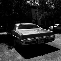 Ecrasée par la lumière... (woltarise) Tags: dodge coronet automobile stationnement parking plateau montréal