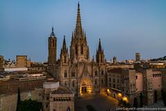 UMT07256 (UmitCukurel) Tags: barcelona barceloneta spain espana sony cathedral gothic city ciudad people antique catalunya es