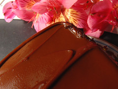 Chocolate Swirl (Robert Stephen) Tags: food flower cake closeup sweet chocolate frosting dulce swirling foodstyling