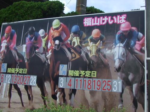 福山競馬場、アラブ馬残る貴重な競馬場