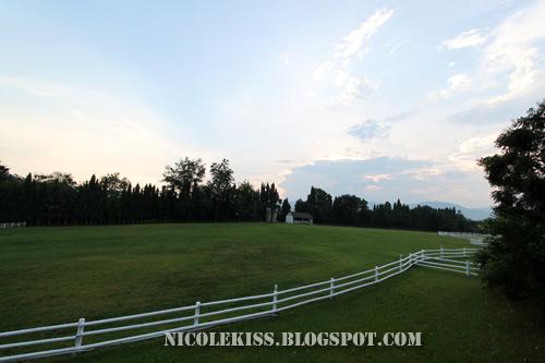 vast field