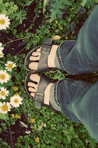toes in the garden