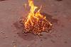 Monanto seeds burning (teqmin) Tags: usaid demo haiti corn farmers seeds burning mpp monsanto hinch haitianpeasants gmofreeworld usforeignaid tminskyixnetcomcom antimonstanto foodsoverignty