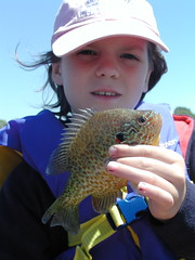 madison07-02-10sarasunfish
