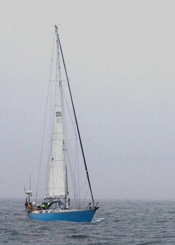 ocean sailboat bay open morro