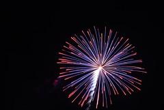 fireworks 2010 122 (gary camp) Tags: fireworks2010