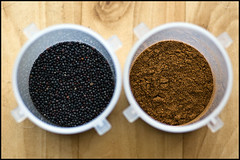 mustard seed and garam masala