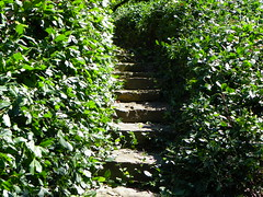 Mizumoto Japanese Stroll Gardens - Springfield, MO (Adventurer Dustin Holmes) Tags: park stairs asian japanese japanesegarden landscaping path steps parks mo missouri springfield thingstodo ozarks japanesegardens touristattraction touristattractions springfieldmissouri mizumoto greenecounty springfieldmo placestogo japanesestrollgarden japanesestrollgardens strollgarden