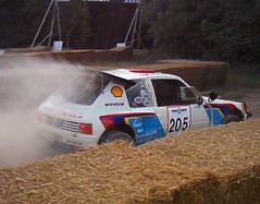 Peugeot 205 GpB starts the stage (74Mex) Tags: festival speed gpb peugeot goodwood 2010 205