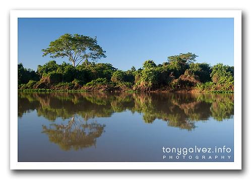 destinos: el Pantanal