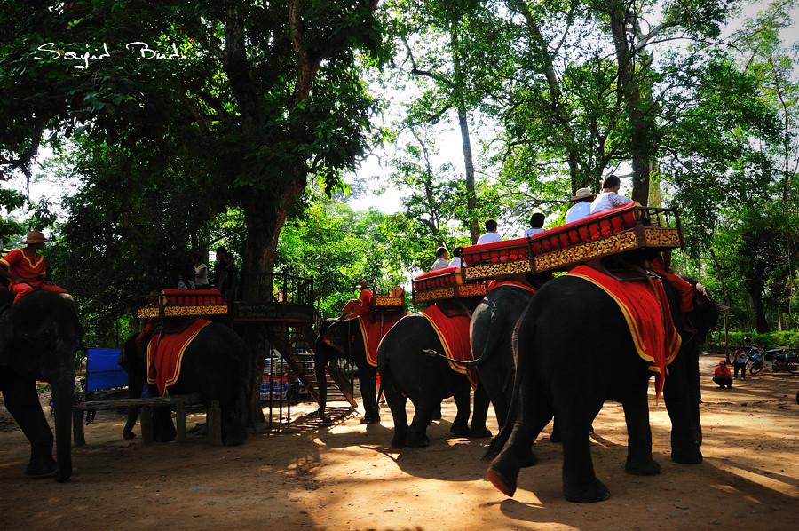 Elephant Rides at Bayon Temple