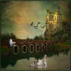 The bridge of the swans - jaci XIII