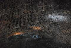 Arched Ceiling (thoth1618) Tags: nyc newyorkcity brooklyn subway arch tour atlanticavenue brooklynheights tunnel ceiling gothamist brooklynny subwaytunnel archceiling brooklynusa tunneltour archedceiling bhra oldestsubwaytunnel atlanticavenuetunneltour httpbrooklynrailnet thebrooklynhistoricrailwayassociation bhratransitsystem