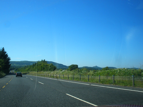 Coming home from Mount Usher Gardens