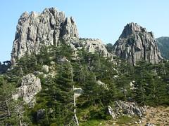 Montée à Punta Furcata : le Castellucciu depuis Bocca Vechigianu