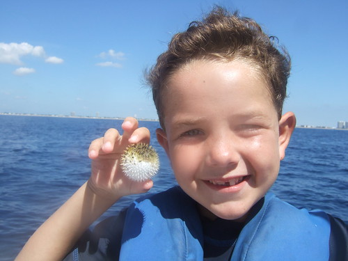 Jason with a long-spined porcupinefish