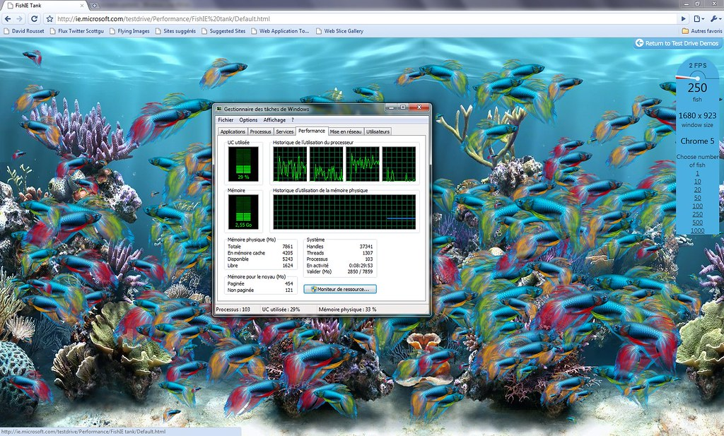 ChromeFish250SonyZ12