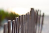 {Turtle Protection} Fence Friday (Jaime973) Tags: beach canon fence 50mm raw dof florida bokeh explore frontpage staugustinebeach hff fencefriday fenchfriday sunriseokeh