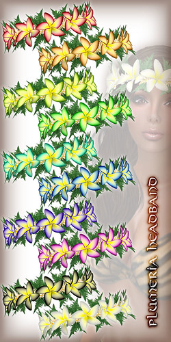 * Charmed * Hula Plumeria Headband All Colors